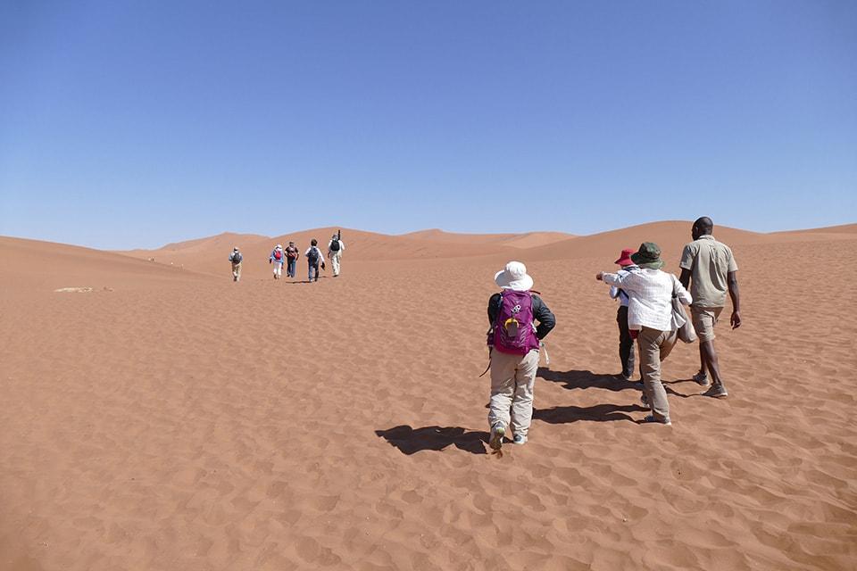 ナミブ砂漠のデッドフライにみんなで行くところです。