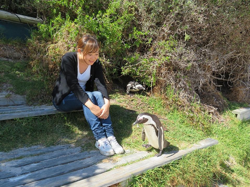 ボルダーズビーチのもう一つの入口から入ると普通のビーチがあり、ペンギンもいる。目の前を通ってくれた記念の一枚。
