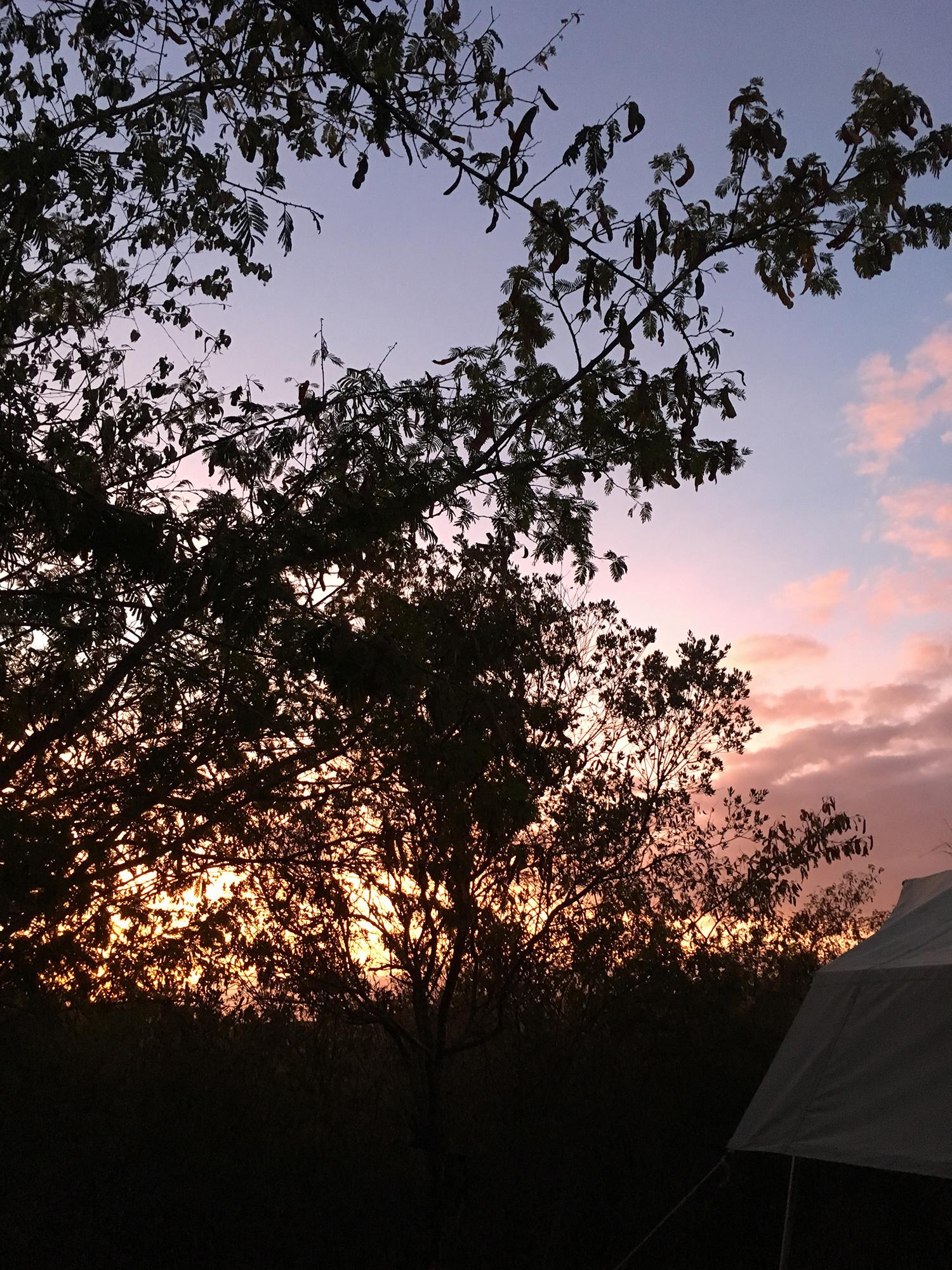 鳥のさえずりで目覚め、テントからきれいな朝日が見れました。