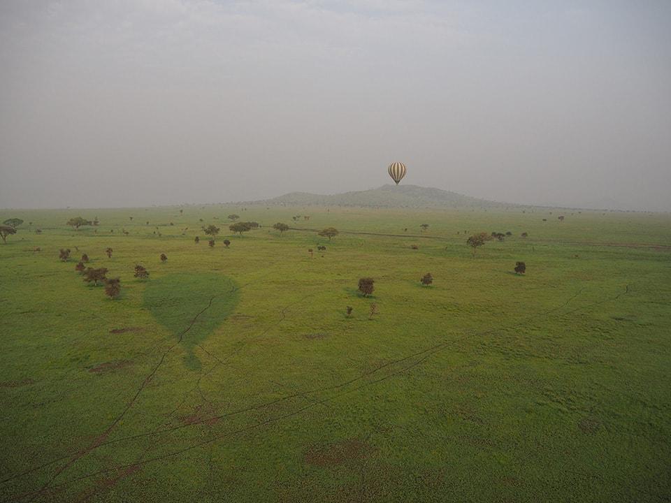 旅の締めくくりは気球から見るサバンナの景色。日本にはない壮大な景色に感動。果てしなく続く草原に昇る朝日はパワーをもらえた気がしました。