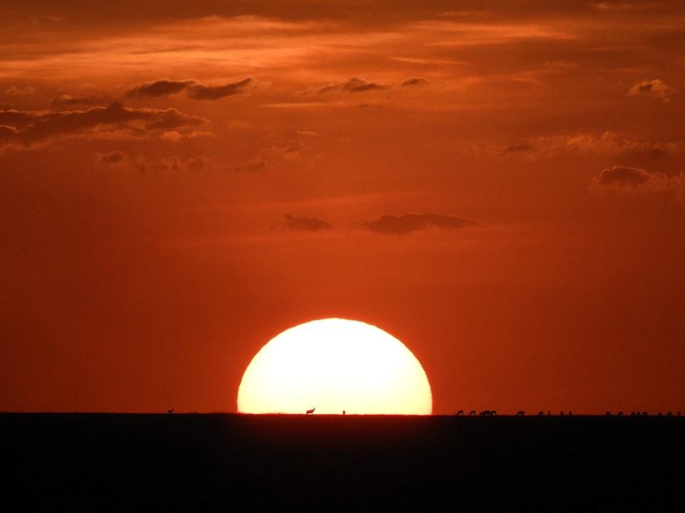 日本では、ほぼ大地に沈む夕陽はみれない。ケニアは赤道直下のためか、太陽も幾分大きくみえました。これを見てると、もっと長くアフリカにいたくなる気持ちになりますね。