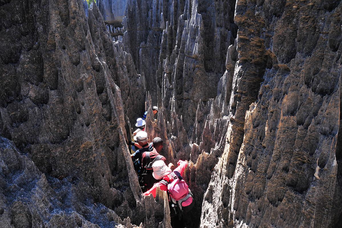 ツィンギ・デ・ベマラ厳正自然保護区の画像 p1_33