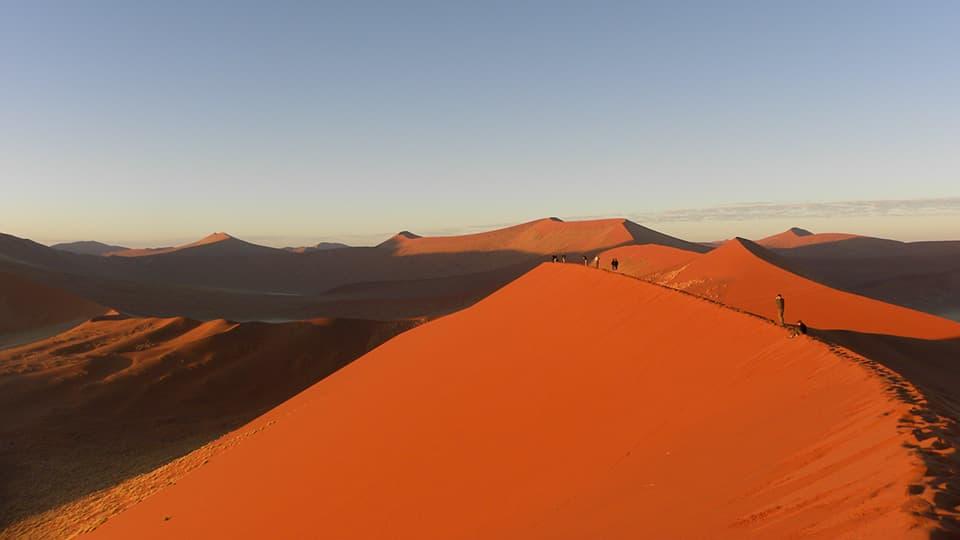 「ナミブ砂漠」の画像検索結果