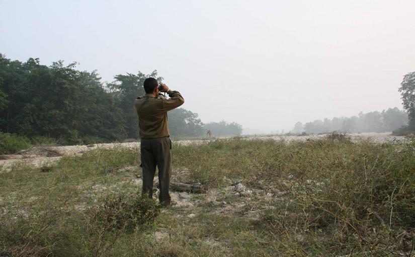 インドでウォーキングサファリ
