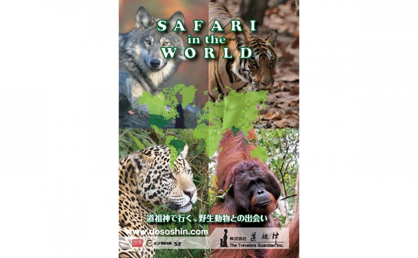 SAFARI IN THE WORLD