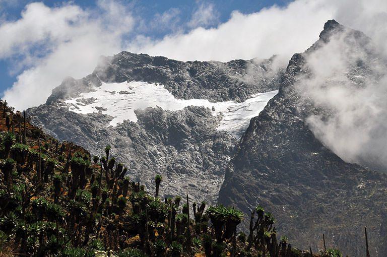 アフリカの山に登ろう! recommend 2 ルウェンゾリ