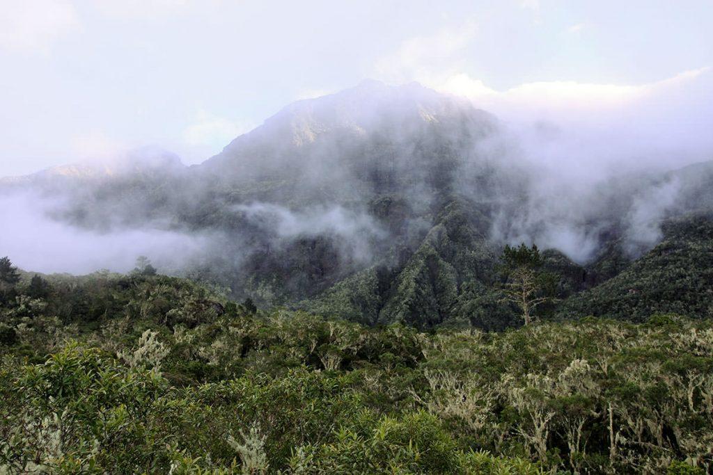 レユニオン最高峰、ピトン・デ・ネージュ(雪の峰の意味)