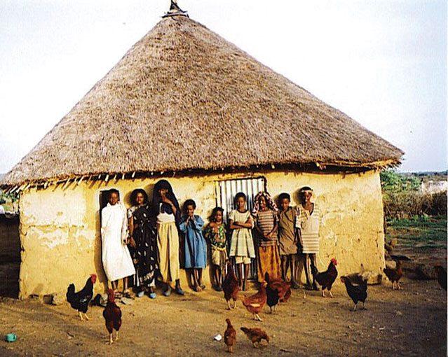 「住」 家は、家族が共に暮らし、喜びや哀しみを分かちあうところ
