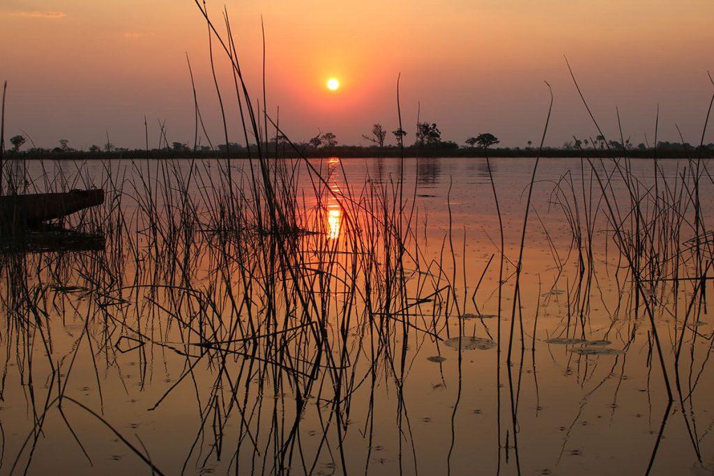 オカバンゴに沈む夕日