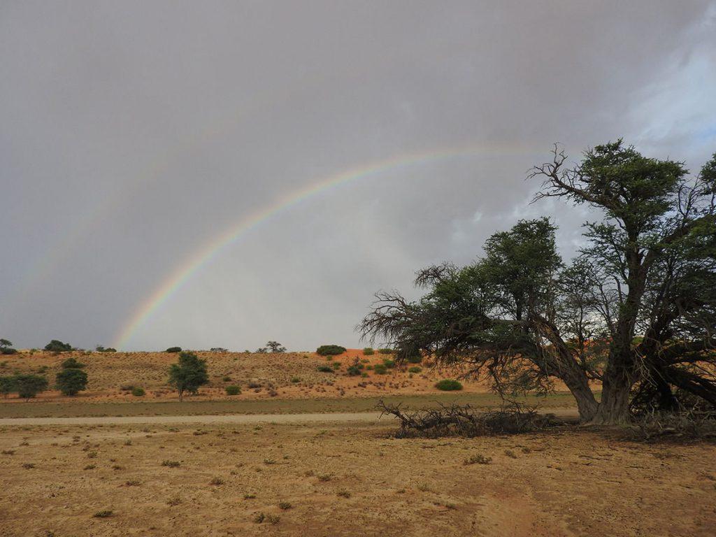 最後日の朝も小雨が降りました。そして虹も見られました。一応、ダブルでかかってます。雨季ならではの風景です。