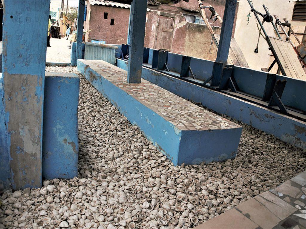 地面は地層の上に何世紀もの貝殻が折り重なっています。