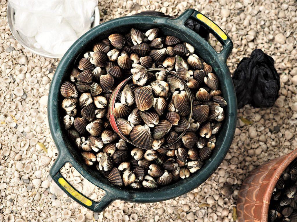 貝殻島だけに名物は貝です。