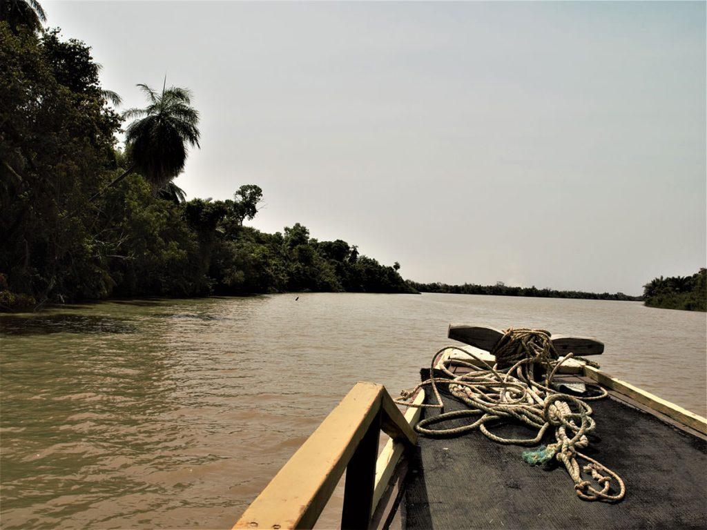 ガンビア河は遡るにつれ、深く闇の暗さが増してきます。