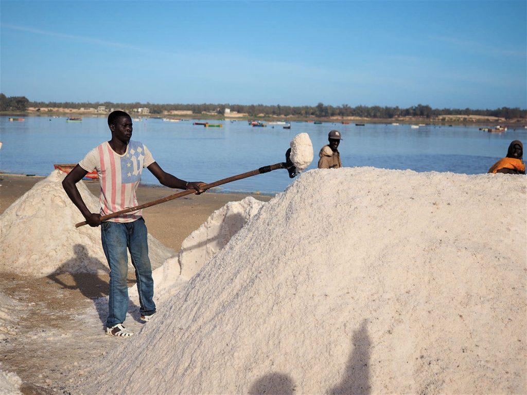 湖の周囲は塩の採掘場が広がります。