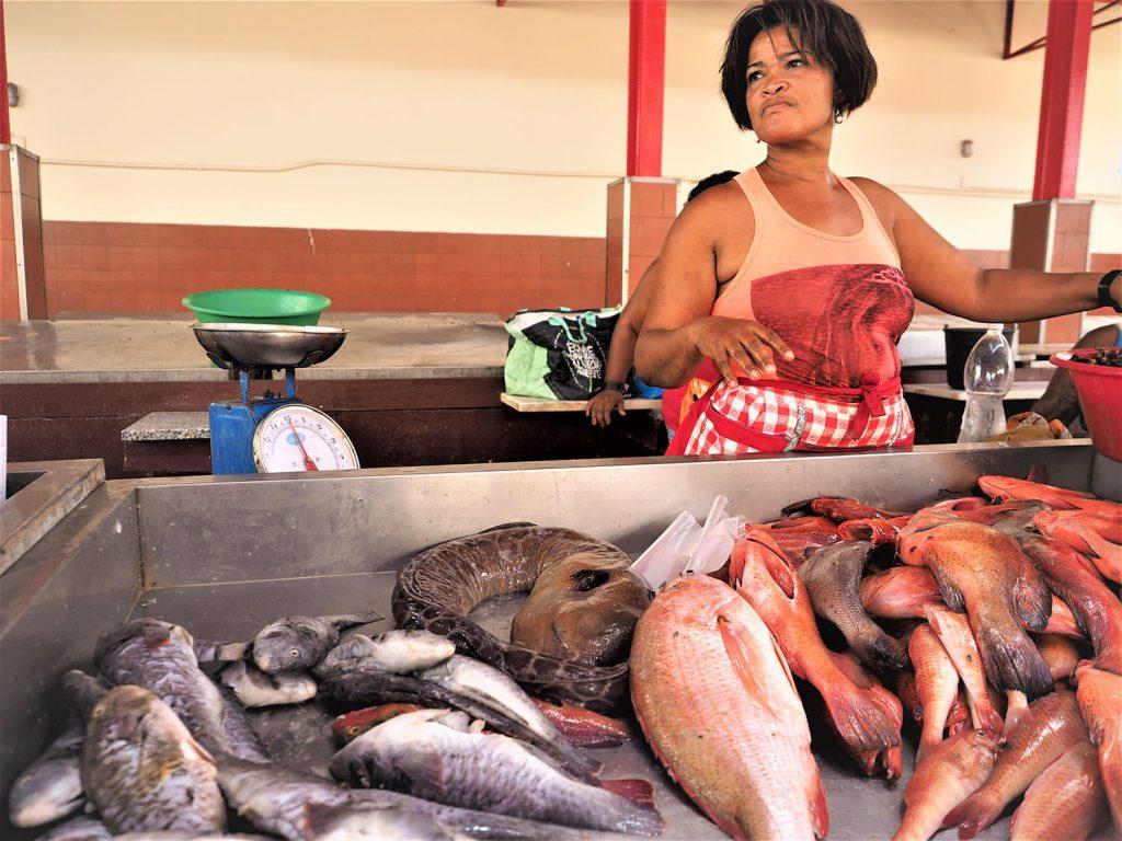 活気に満ちたミンデロの魚市場