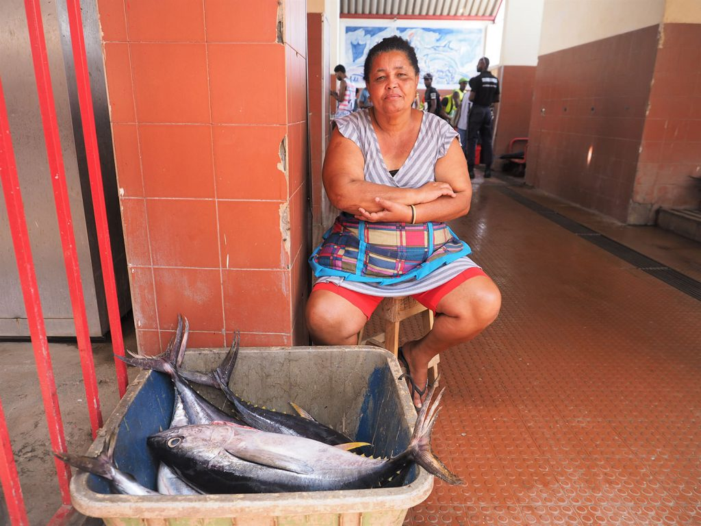 お!タイセイヨウマグロもあります。マグロの仲間としては最大の種で、成魚700kgという記録があるそうです。