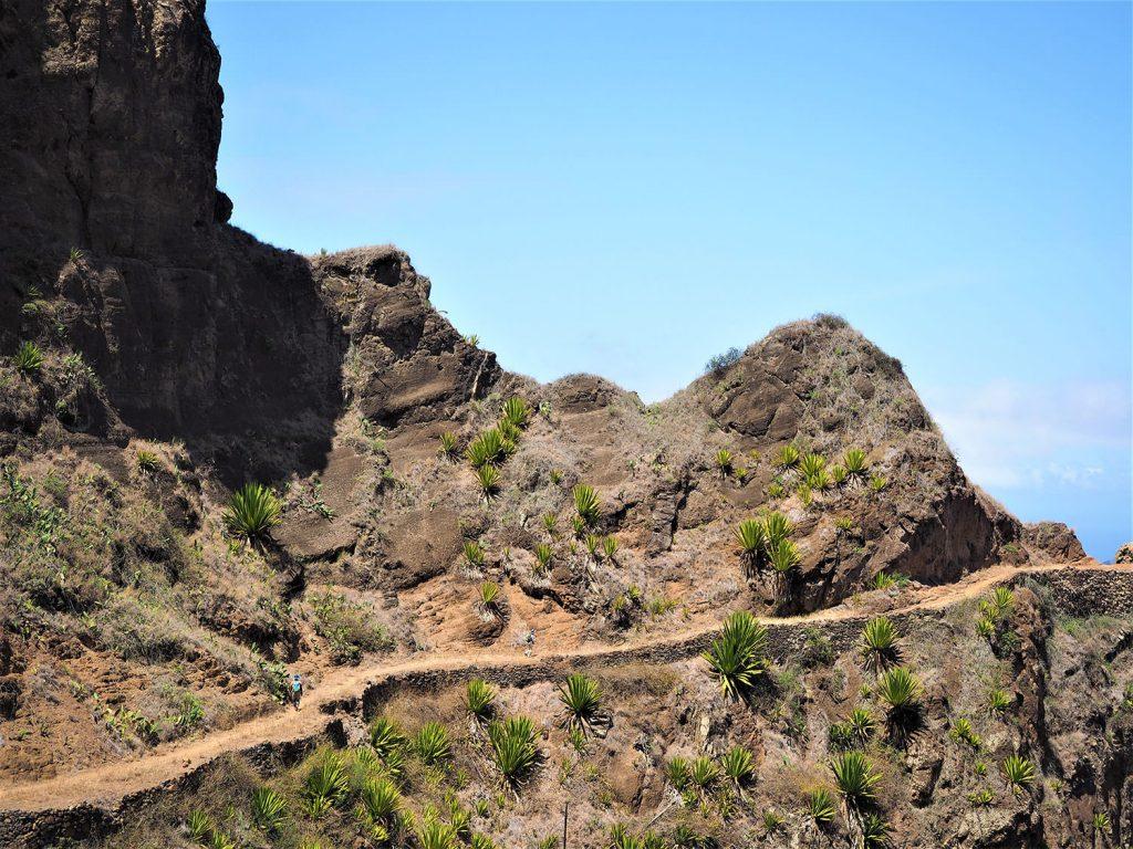 起伏に富んだ見ごたえのある道が続きます。歩きごたえも十分!