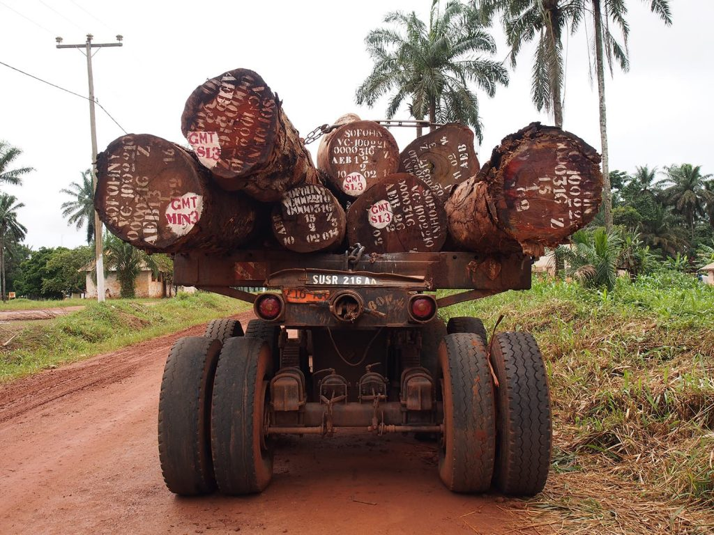 南部に入ると増えてくる木材を運ぶローリー