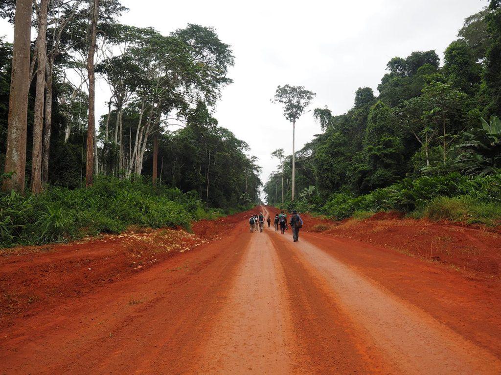 赤土の幹線道路から森の中へ