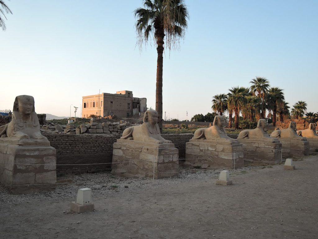 スフィンクスが回廊を守る、ルクソール神殿