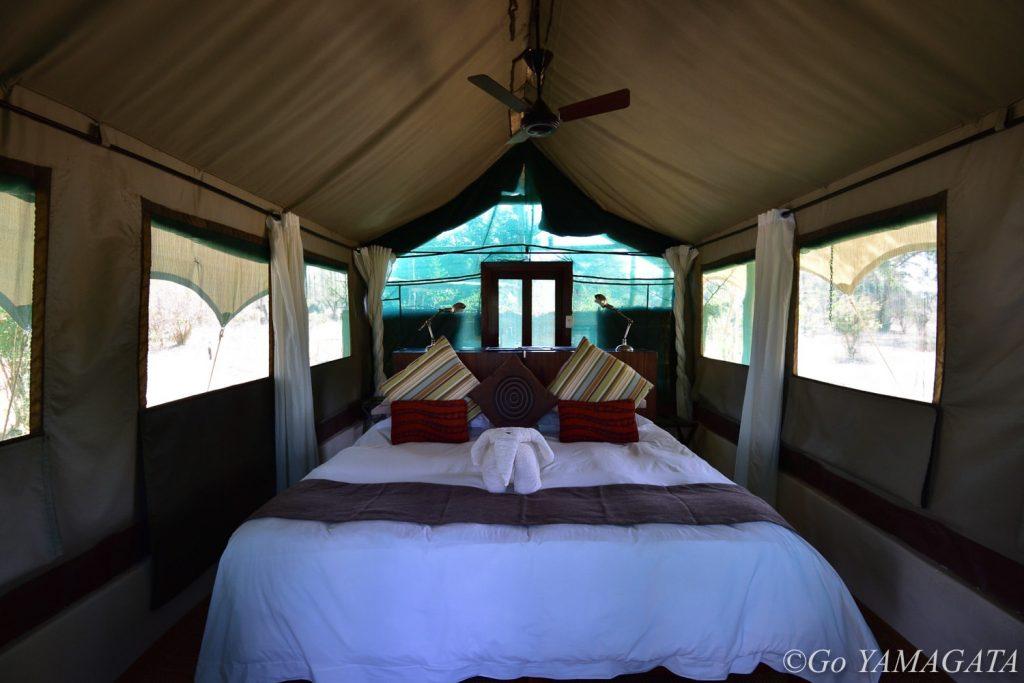 チョングウェ・リバー・キャンプの部屋。テントタイプだが非常に快適。写真はシングルのもの。シャワーは24時間お湯が出るし、電源もあるのでカメラ等の充電は問題なくできる。