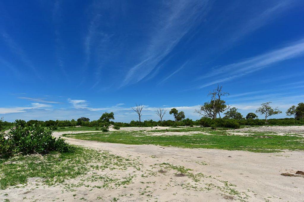 サブチマーシュの草原2