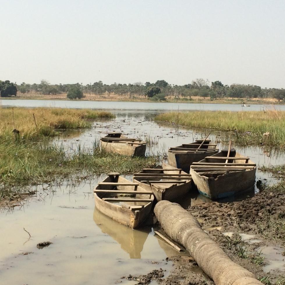 カバ語を話せる船頭さんが小舟を漕いで案内してくれる