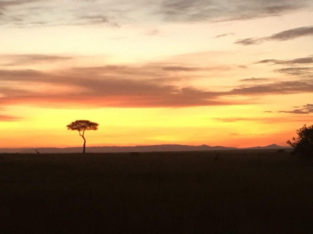 マサイマラの夕暮れ