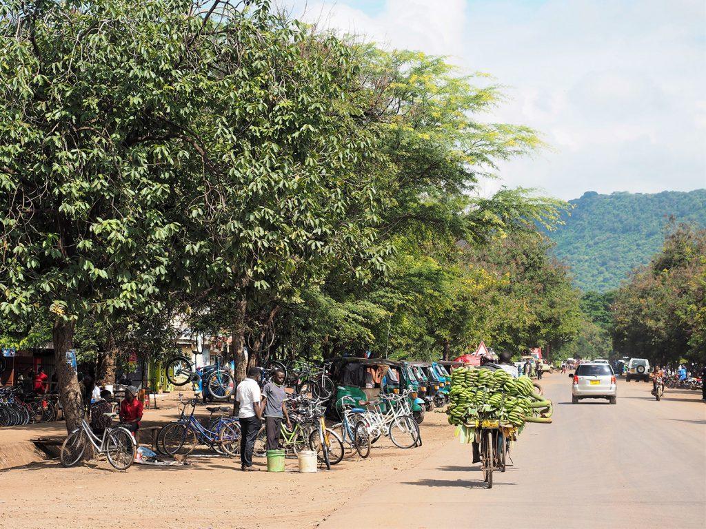 北部タンザニアの街アルーシャで1泊し、早速セレンゲティ国立公園へと向かいます。