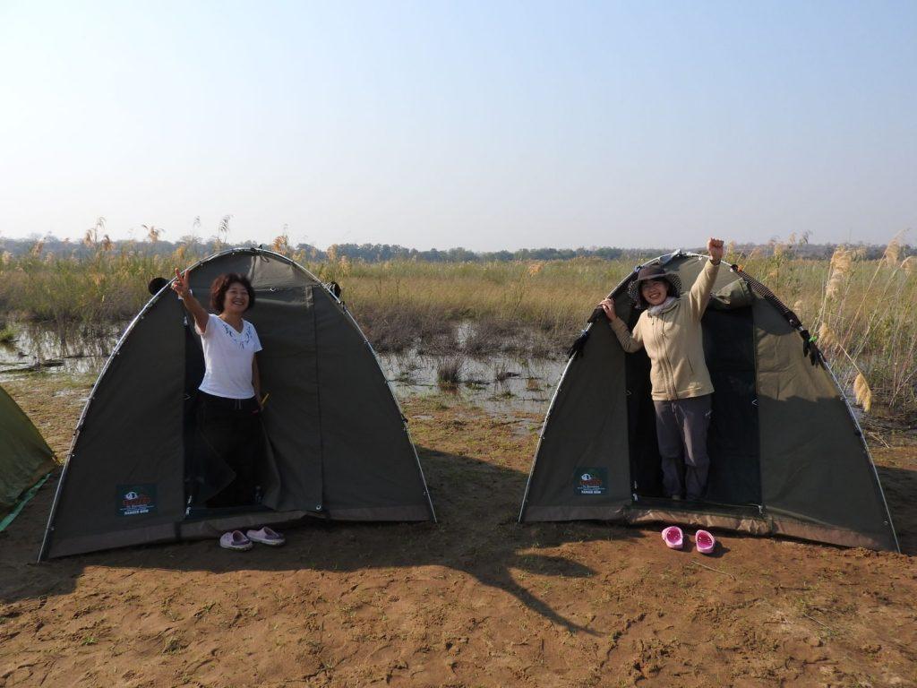 南部アフリカでは一般的なサイズのテントで眠りました。夜はホタルが見られました。