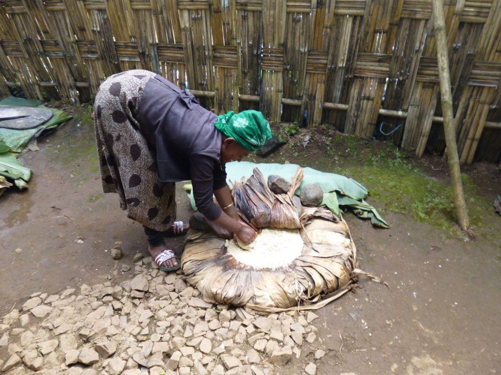 取って潰したデンプンを地中で1~3カ月かけて発酵させ、発酵させたデンプンを平らにして蒸し焼きにし、野菜やお肉と一緒に食べるのが一般的。