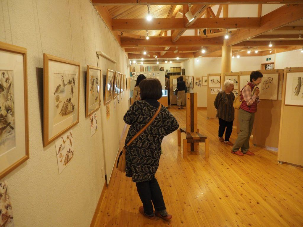 明るい館内には薮内さんが描いた鳥や動物の絵が展示されています。