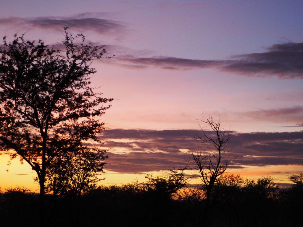そして、セレンゲティに昇る朝日。