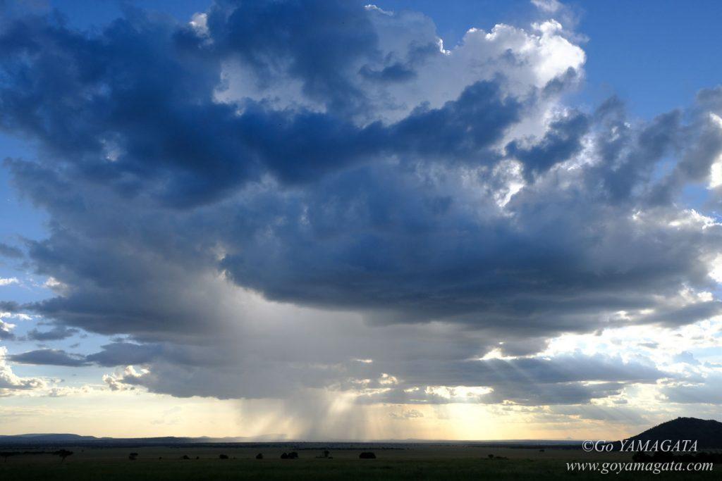 サバンナの上空に浮かぶ大きな雨雲
