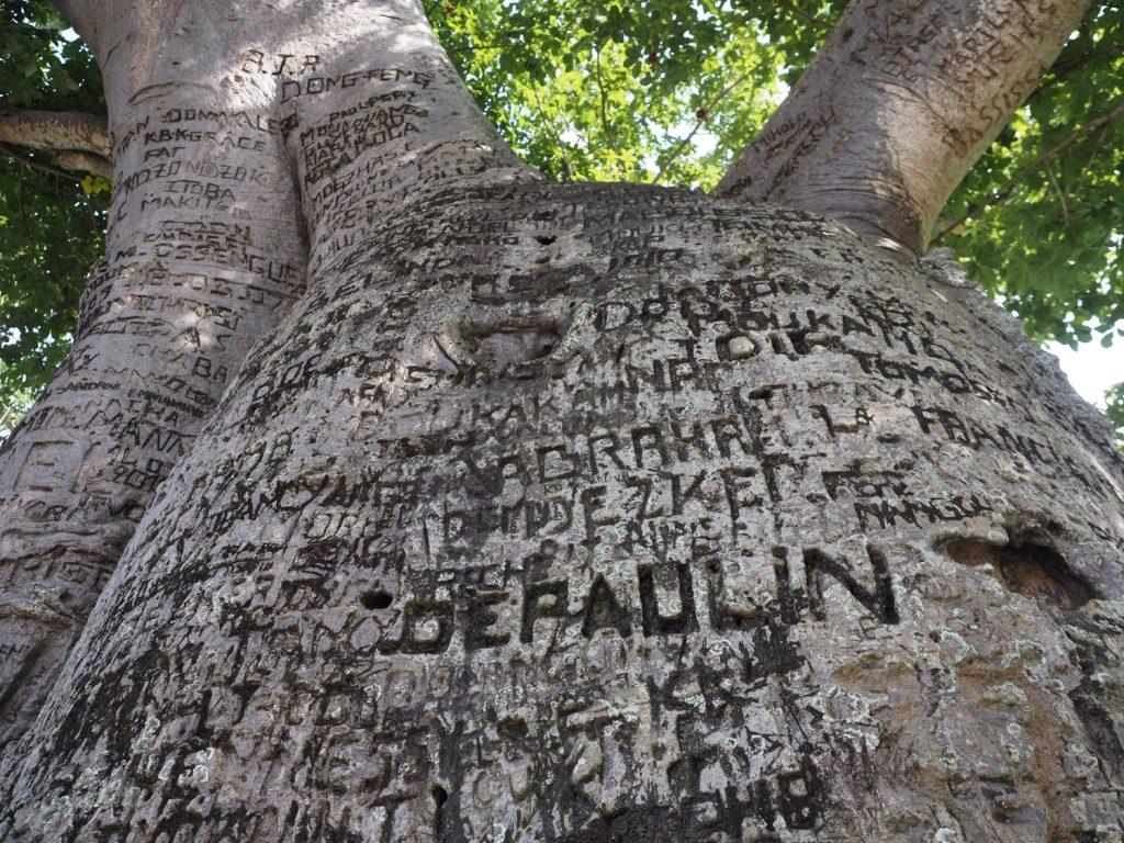 いろんな人が自身の名前を刻んでいます。現大統領ドニ・サスヌゲソの名前も。