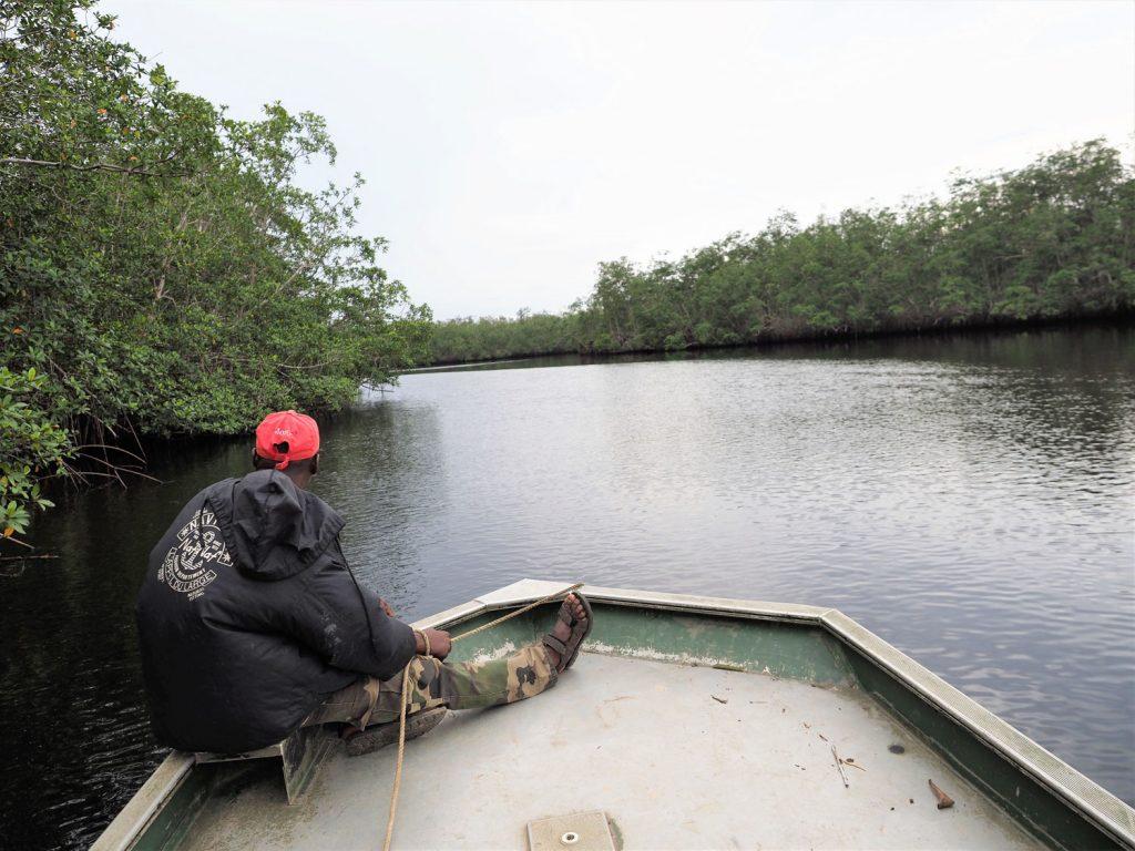車で探すのは諦めて、マングローブが連なる川の中へとボートを出してみます。