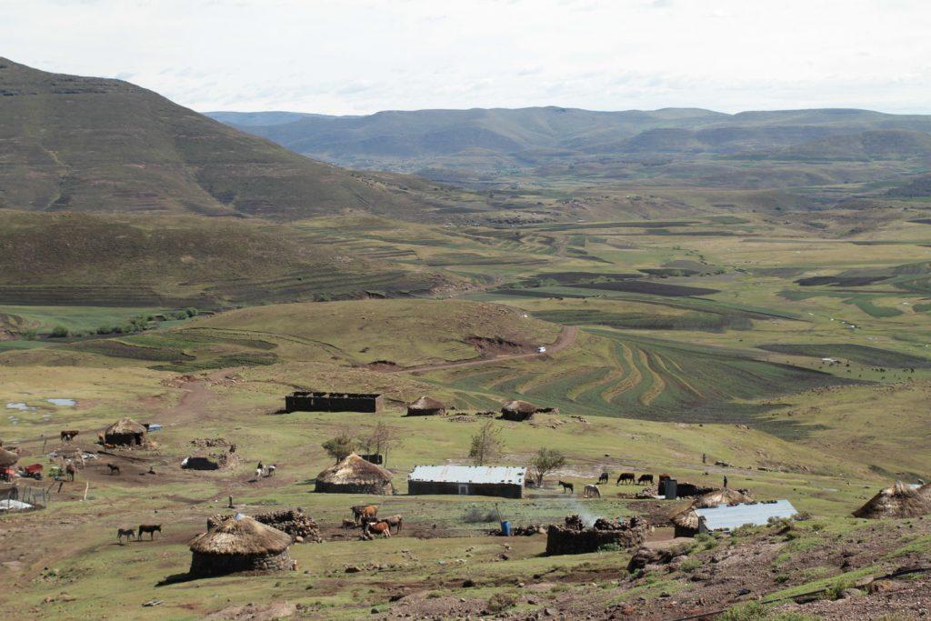 牧歌的な村の風景
