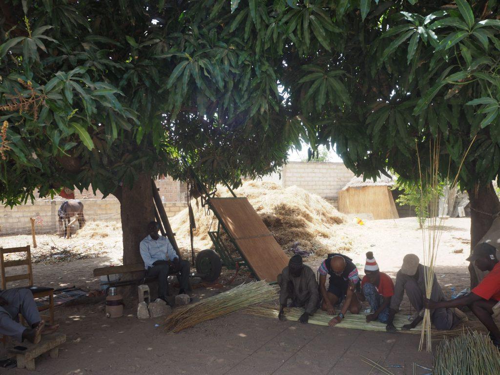 女性が食事を作る間、男性はというと、別のマンゴーの木の下で、茣蓙作りや馬の世話。私たちもゴザづくり体験をさせていただきました。