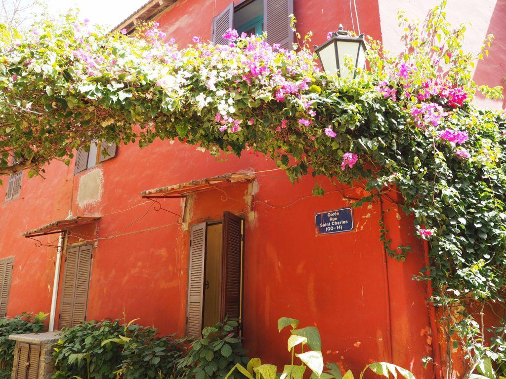 ゴレ島には、色鮮やかなブーゲンビリアが咲き誇っていました。