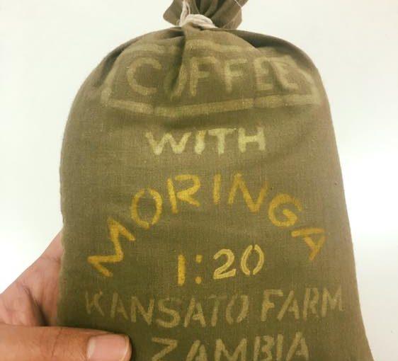 モリンガコーヒー from ザンビア