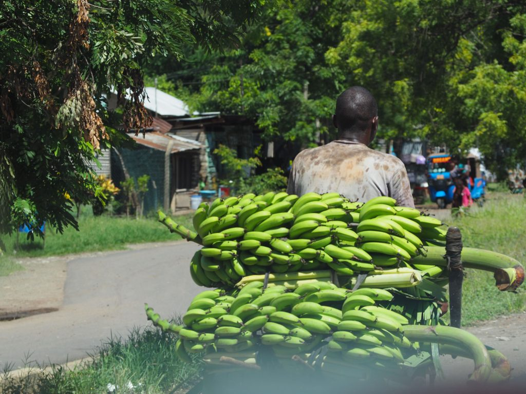 揚げるとお芋のような味のするグリーンバナナ。