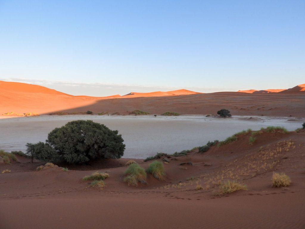 ナミブの砂丘に行くのに順番をどうするか迷うところですが、今回はソーサスフライを先にしました。フライには水がなく、干上がっていました。