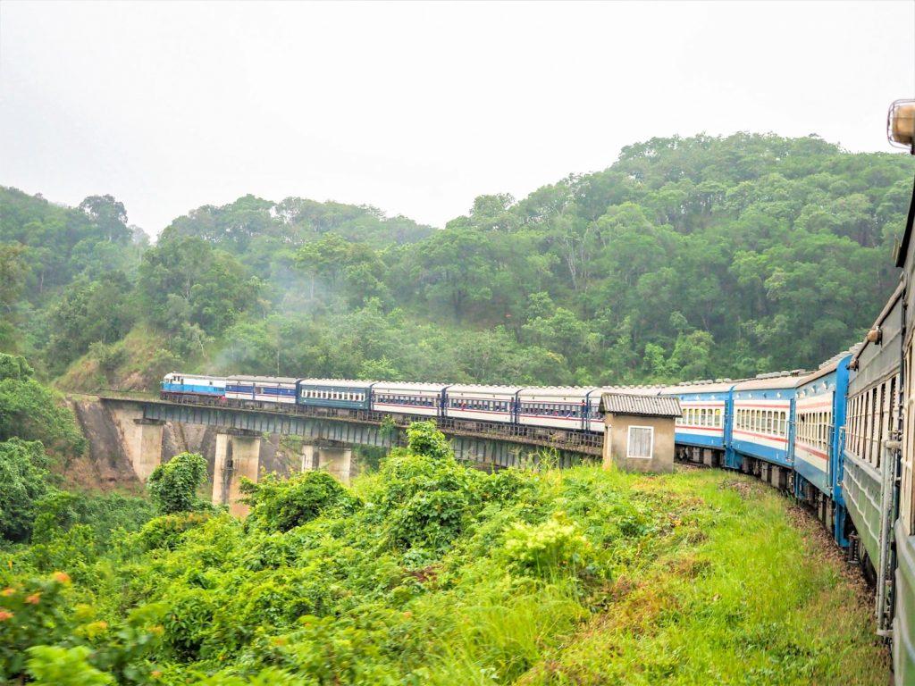 列車は、セルー野生動物保護区の中を走り抜けていきます。