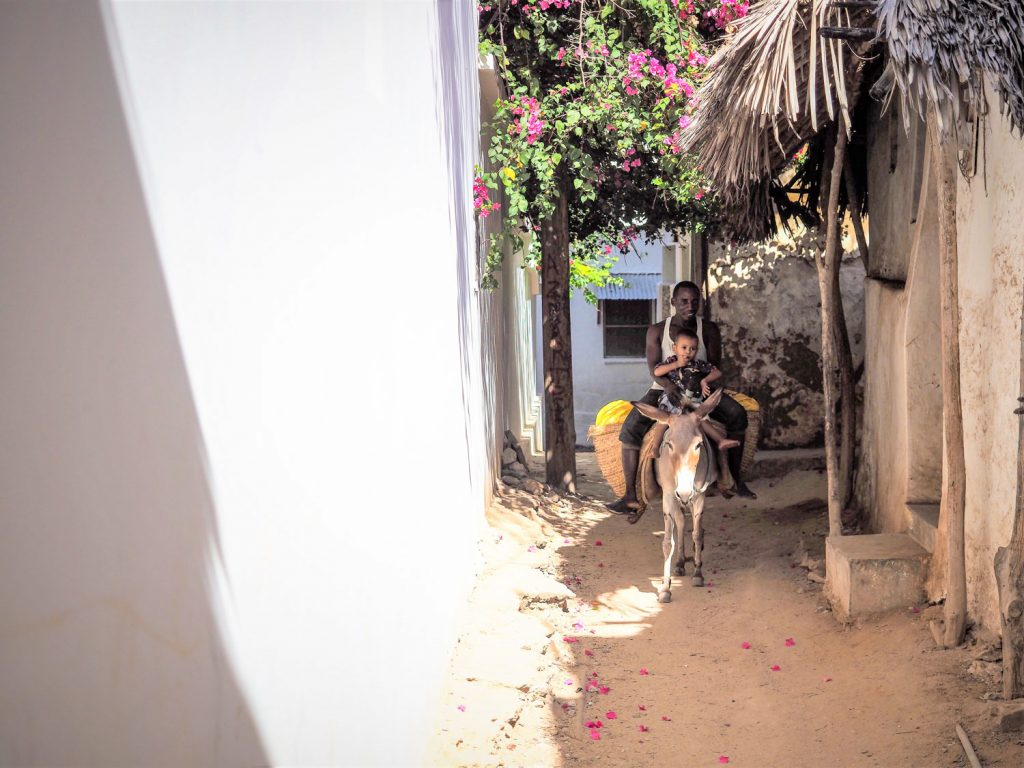 シェラの街は村と言ってもいいほどの大きさ。白い壁が続く家々と村全体が砂地に覆われています。