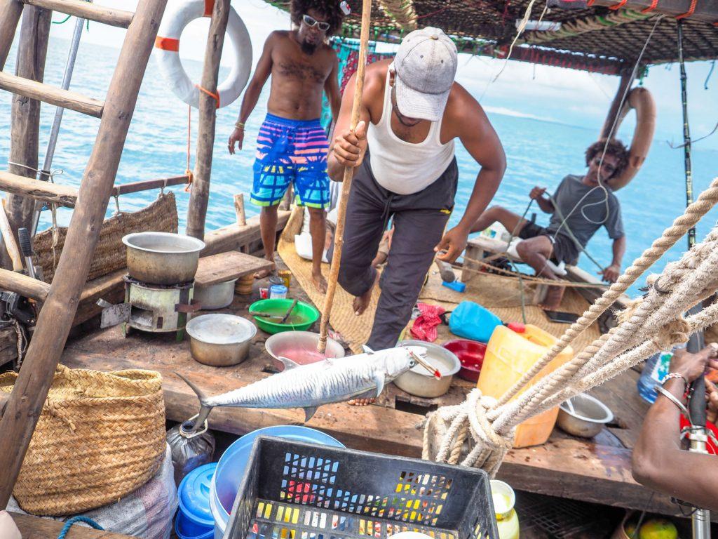途中、航海士の1人が海鳥が群がっている漁場(フィッシュレーン)を発見。船を走らせ、見事に大物をキャッチ!