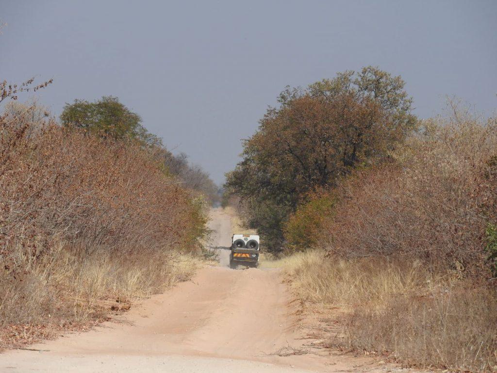ボツワナのカサネに到着した後、こんな道を走ってサブティに向かいます。私にとっては9か月ぶりのサブティです。ウェストのくぼみのために車の揺れも楽しんでいただいたと思います。