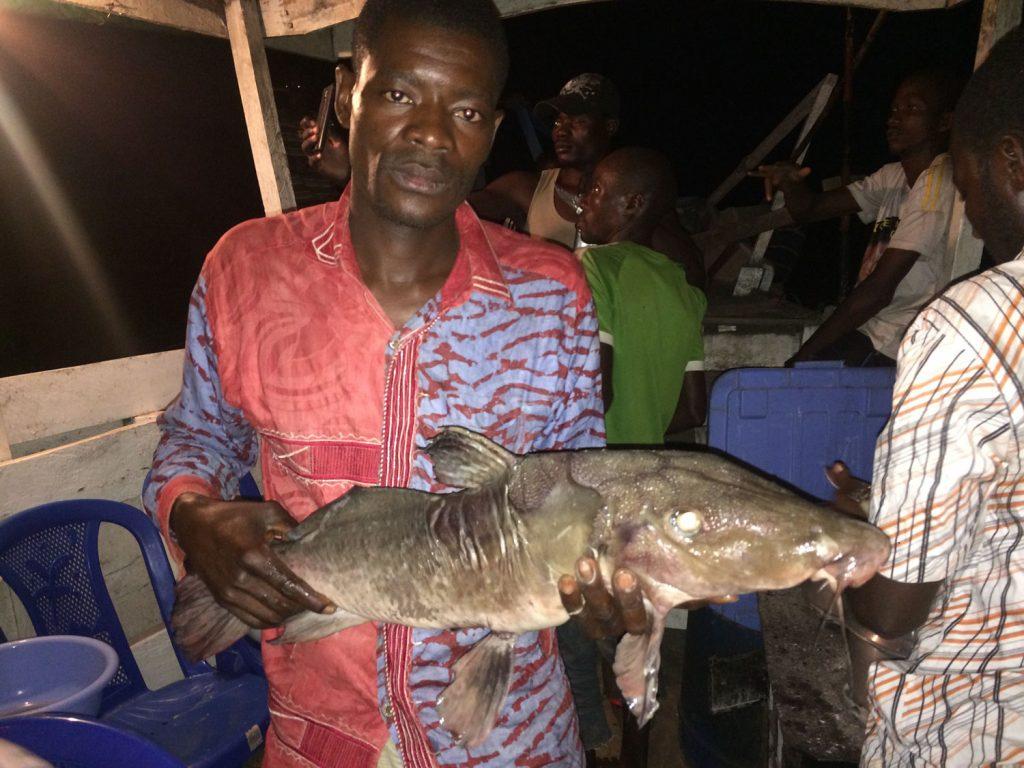 村人が魚を売りに来ることも